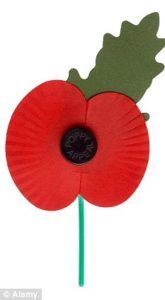 People wear poppies to show their respect for those who gave their lives in the war.
