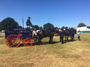 A coach and horses at The Royal Norfolk Show