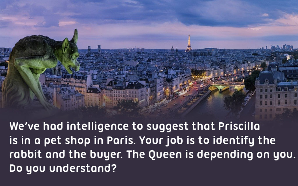 View of Paris from high vantagepoint, slightly ominous with text reading: We've had intelligence to suggest that Priscilla  is in a pet shop in Paris. Your job is to identify the  rabbit and the buyer. The Queen is depending on you. Do you understand?